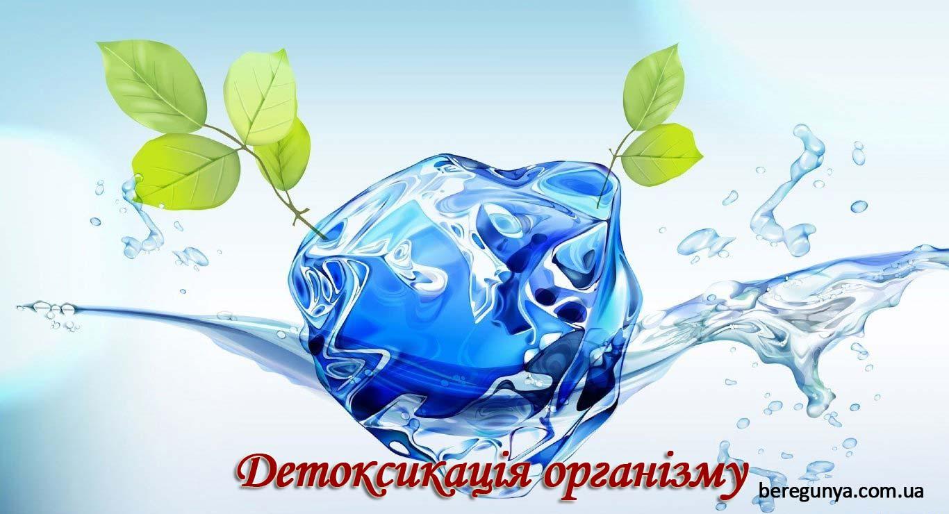 Детоксикація організму